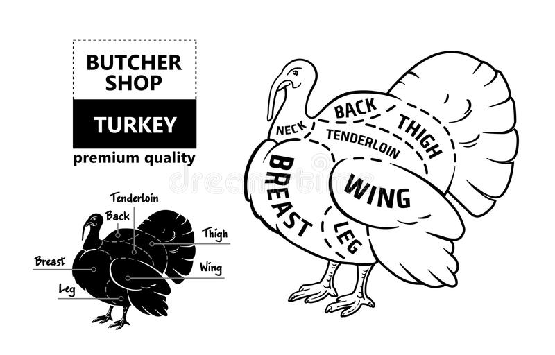 Correct Turkey Diagram - Electrical Drawing Wiring Diagram •