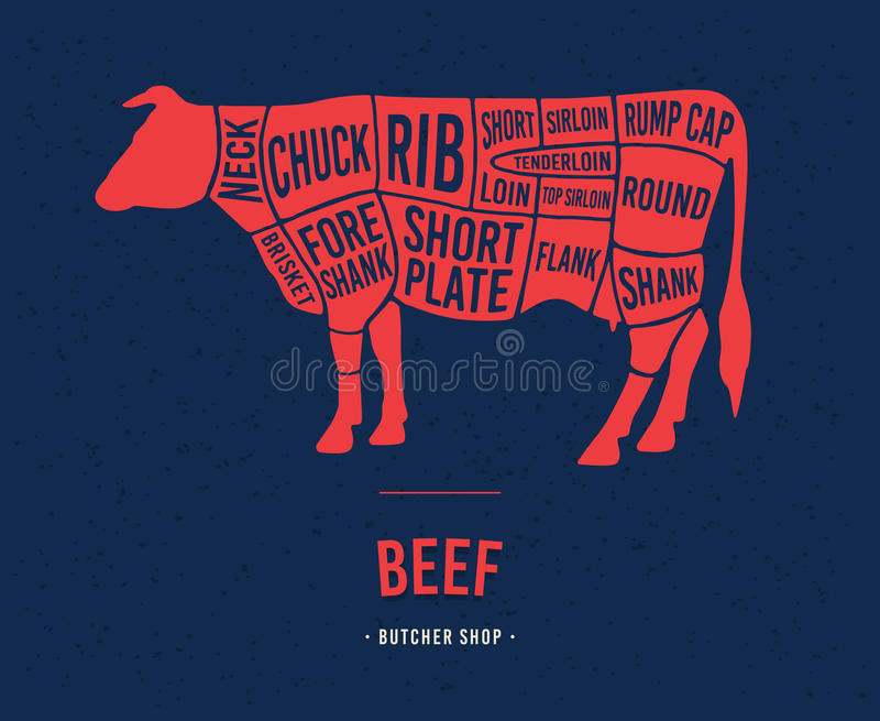 Meat cuts. Scheme of beef. stock illustration