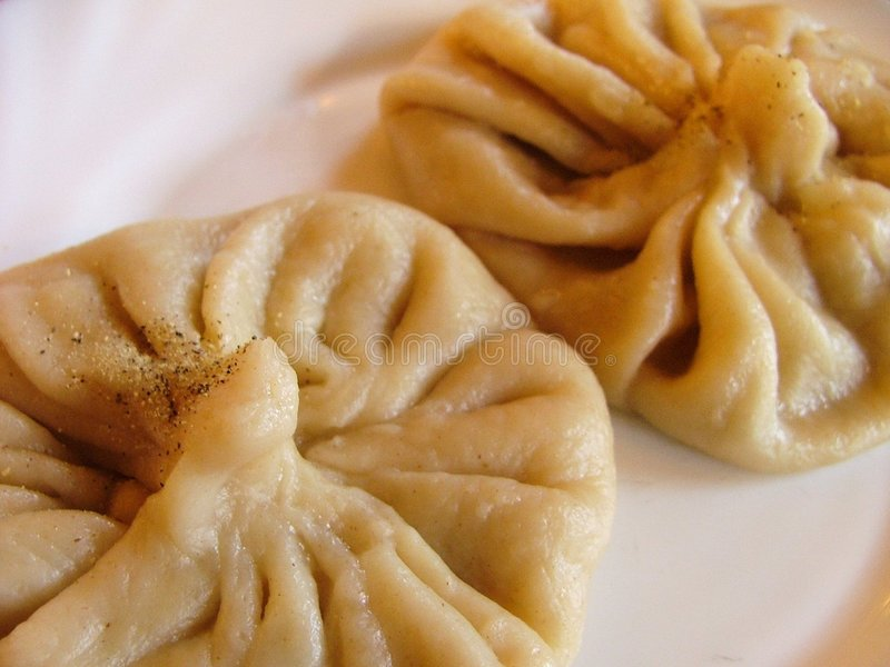Download Meat dumplings stock image. Image of delicious, dish, asian - 668751