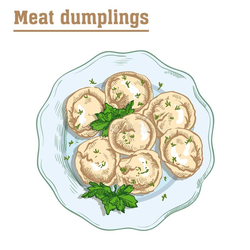Meat dumplings. ravioli. main courses. Colored illustration on a white background royalty free illustration