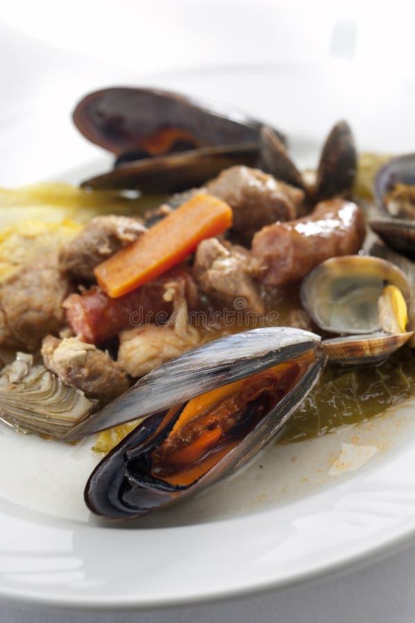 Meat- och fiskstew arkivfoto