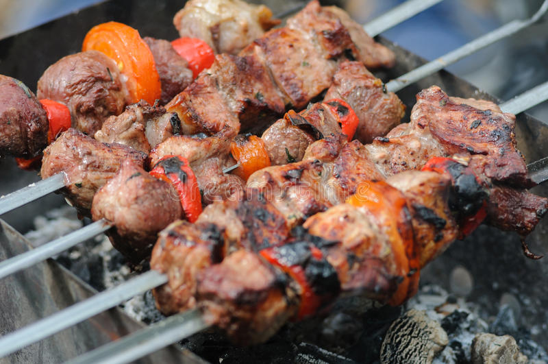 Meat a shish kebab with vegetables roast on the coals stock image
