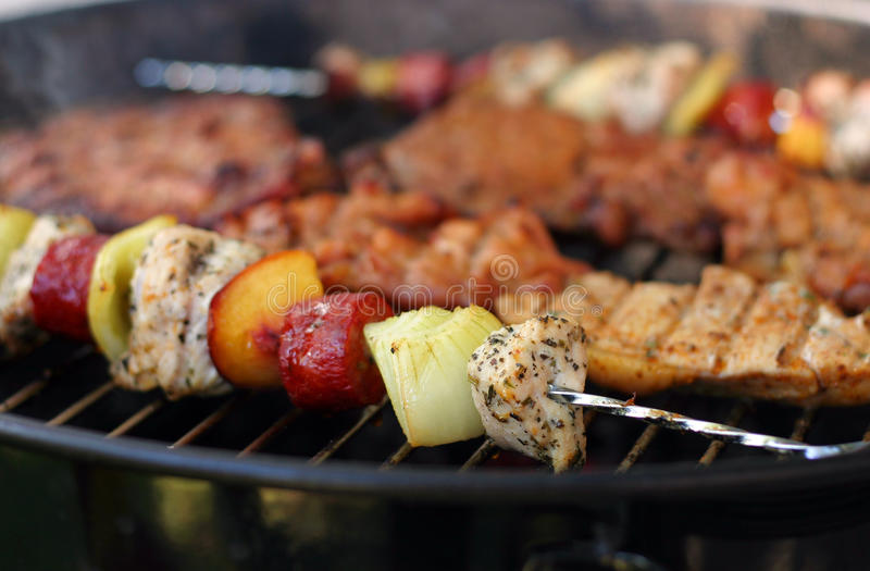 Download Meat And Skewers On The Grill Stock Photo - Image of crust, pork: 9769246