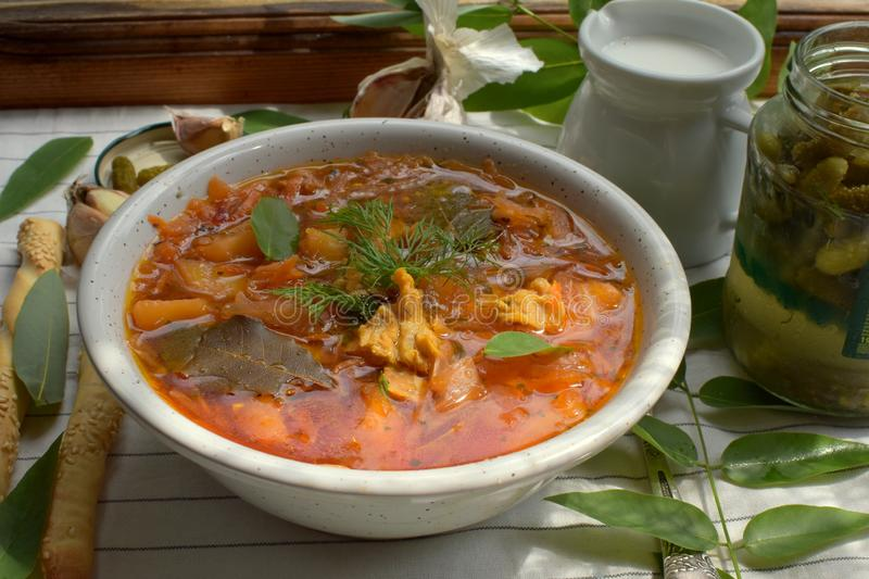Meat soup, solyanka, bay leaf in soup, soup and sour cream, soup and pickle, soup and fennel, tasty soup, hot soup, a lunch stock photo