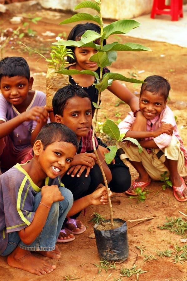 Mecanismo impulsor de la plantación del árbol el día de ambiente de mundo fotografía de archivo libre de regalías