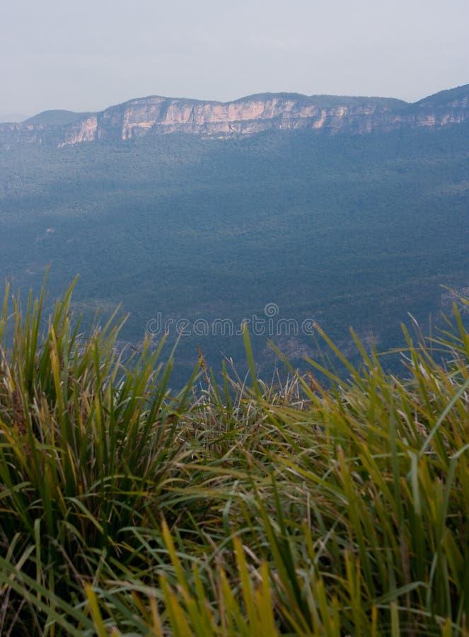 Mechón verde cerca del Cahill' puesto de observación de s en las montañas azules fotos de archivo