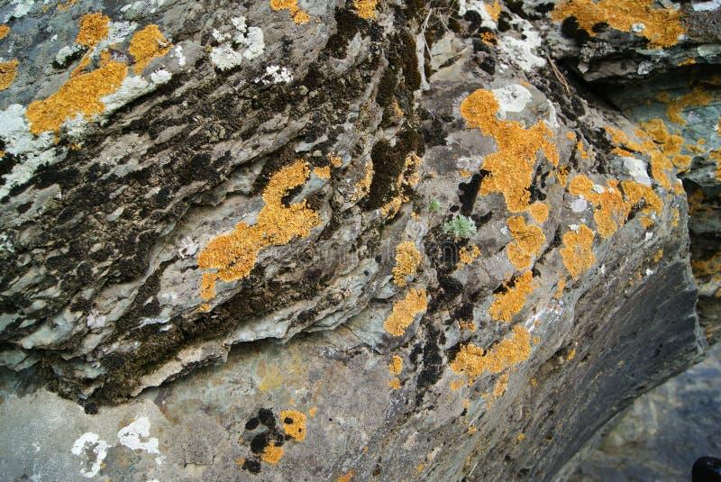 mech góry skała zdjęcie royalty free