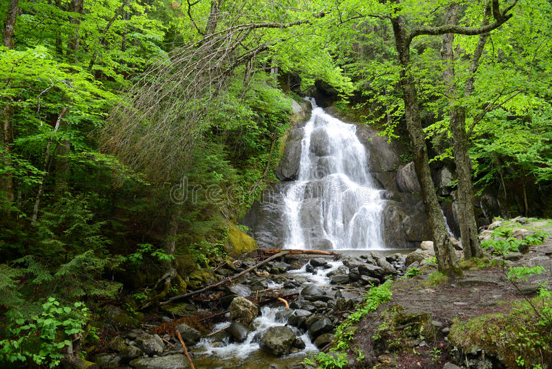 Mech roztoki spadki, Vermont, usa obraz royalty free