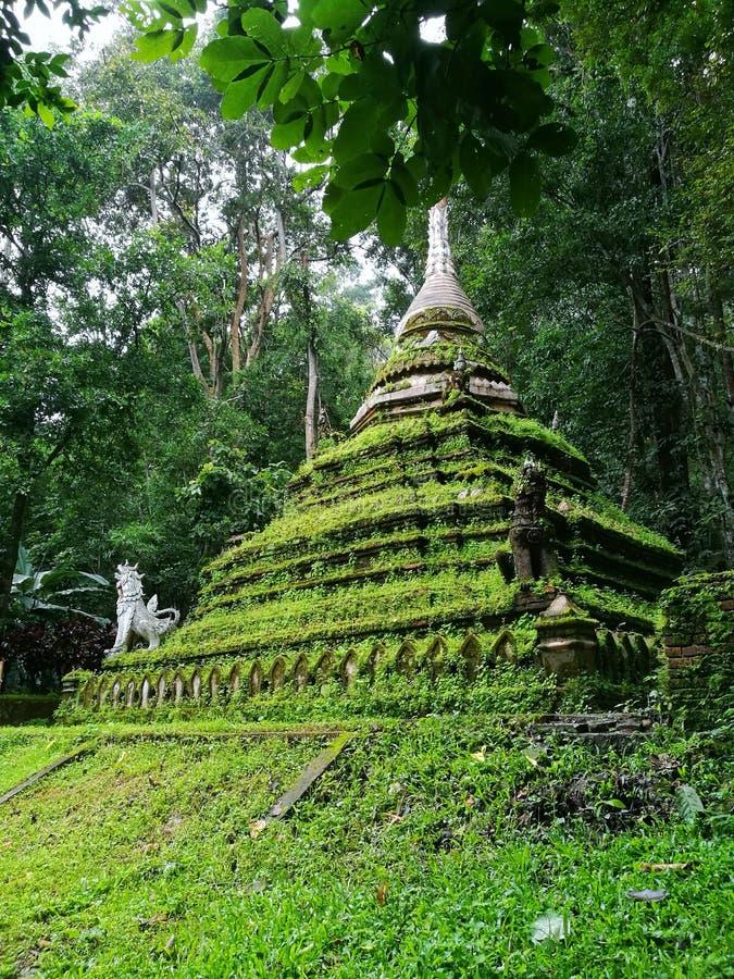 Mech stupa w Chiang Mai Tajlandia obraz royalty free