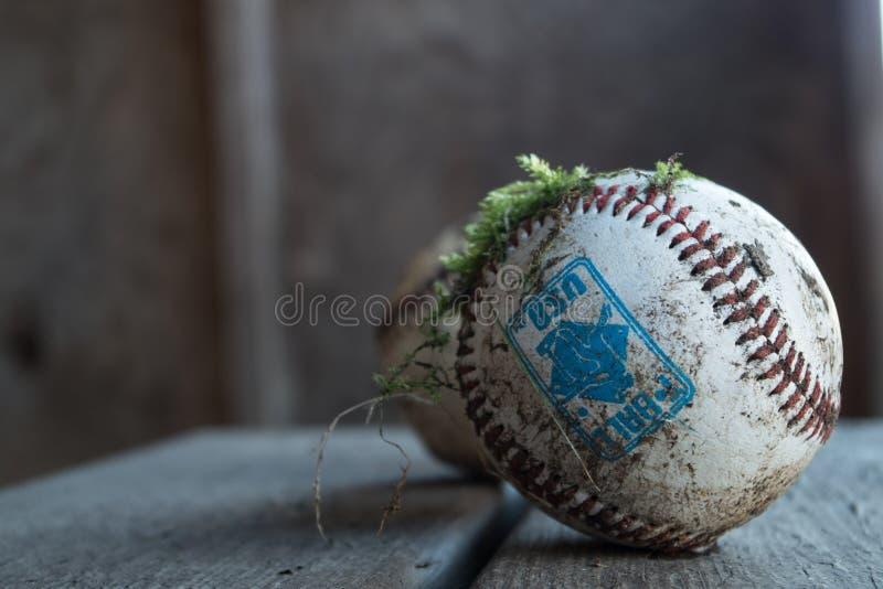 Mechaci baseballe fotografia stock