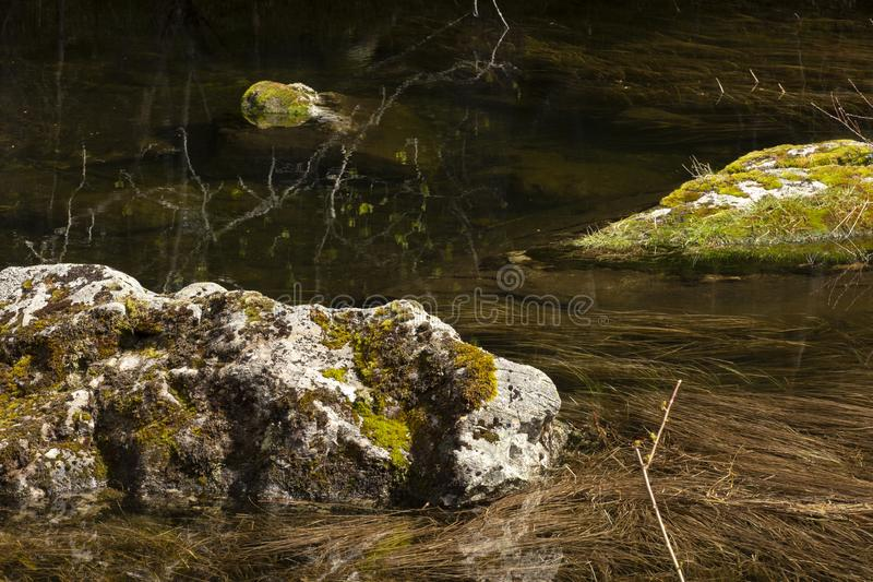 Mechate skały w lasowym stawie Wciąż woda, zanurzający kamienie, ciemność Odbicia w przejrzystej wodzie Naturalny t?o obraz stock