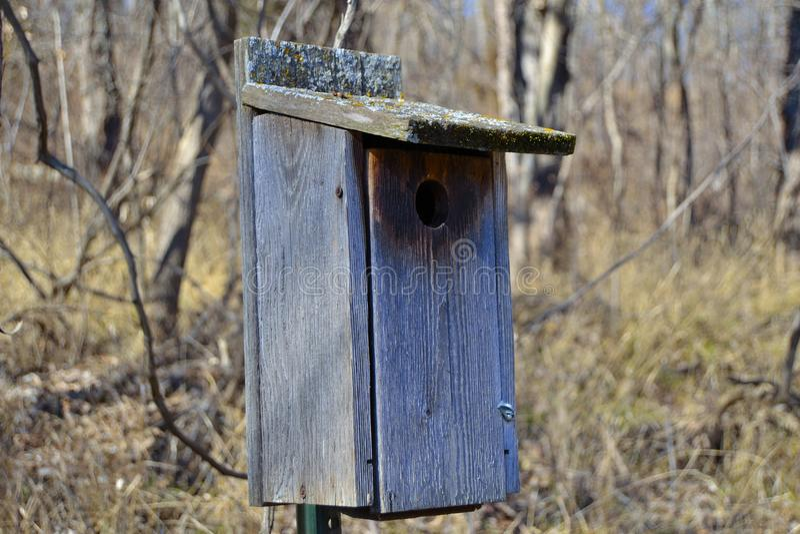 Mechaty birdhouse obrazy stock