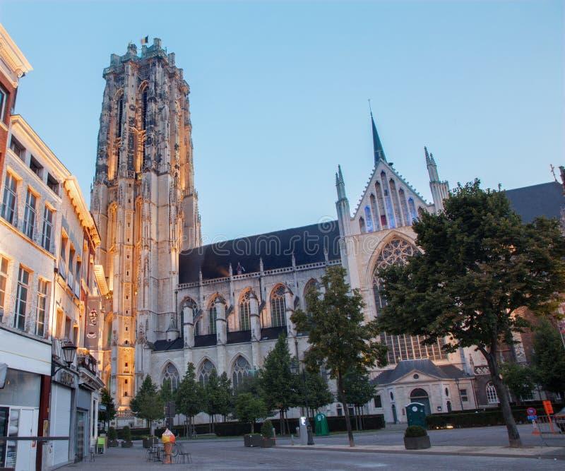 Mechelen - domkyrka för St. Rumbolds i skymning royaltyfria foton