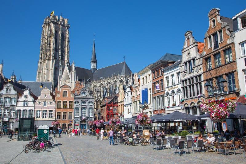 Mechelen - Grote markt och domkyrka för St. Rumbolds royaltyfria foton