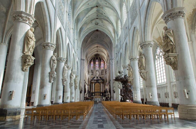 Mechelen - skepp av domkyrkan för St. Rumbolds royaltyfri foto