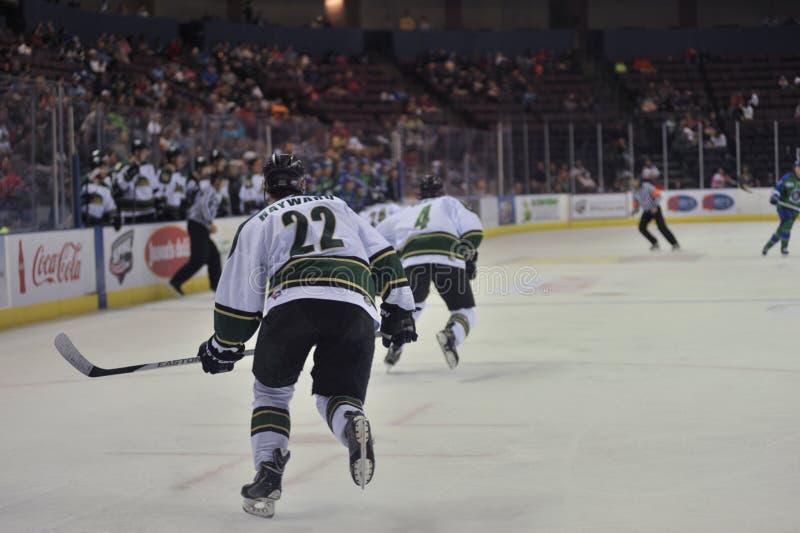 Mecz hokeja zdjęcie royalty free