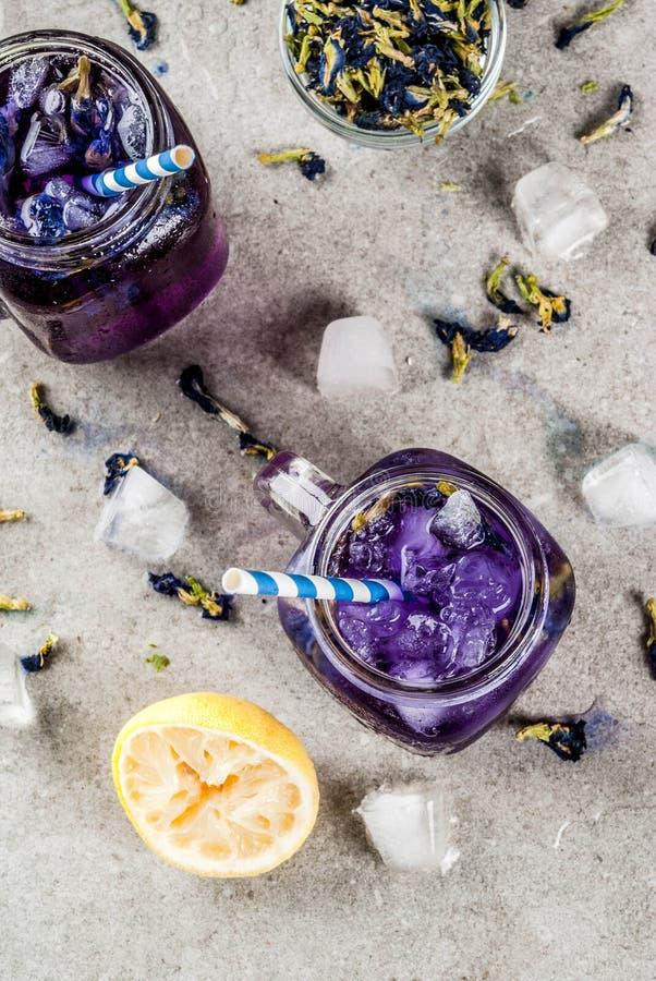 Med is te för blomma för fjärilsärta royaltyfri fotografi
