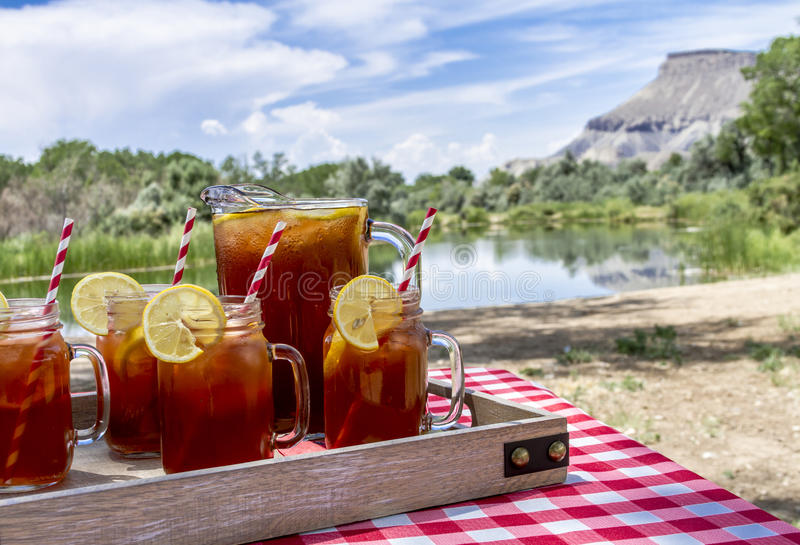 Med is te på picknicken i Grandet Junction, Colorado arkivbild
