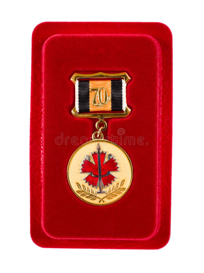 Medalha do special do russo fotografia de stock royalty free