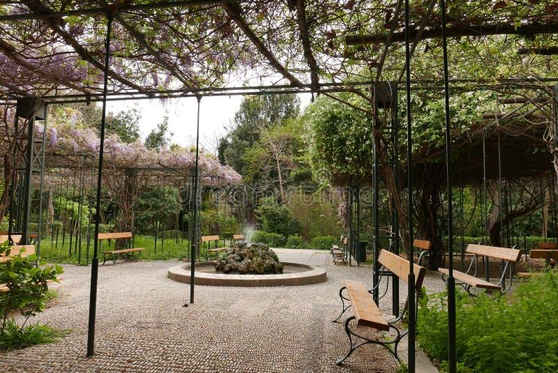 Medborgareträdgård, Aten arkivbild