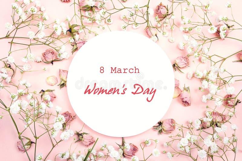 Meddelande för hälsning för dag för kvinna` s på vitrundaram med gypsophil royaltyfri fotografi