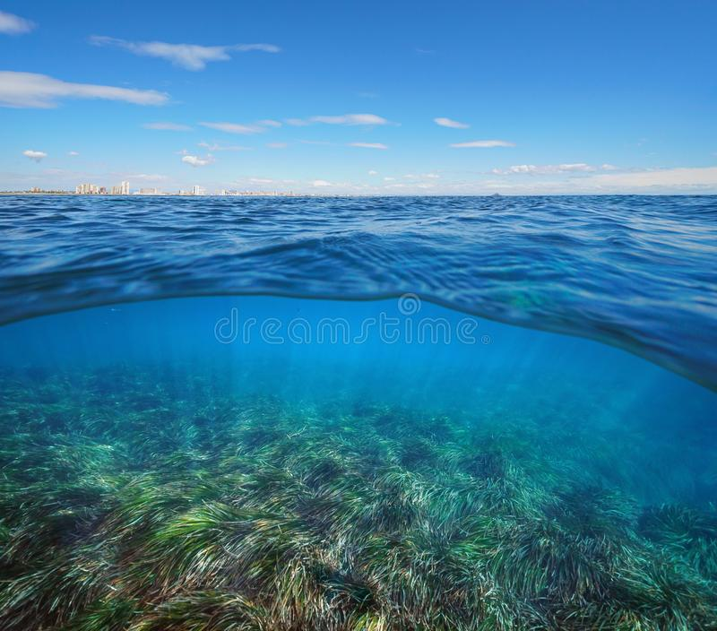 Medelhavhorisont med byggnader och undervattens- neptune seagrass royaltyfri fotografi