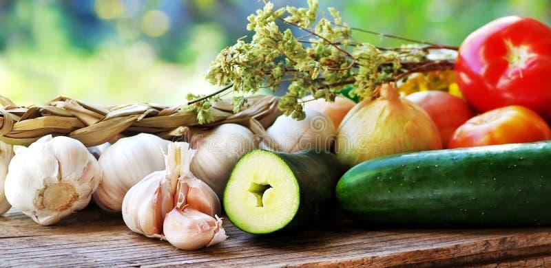 Medelhavs- kokkonstingredienser arkivbild