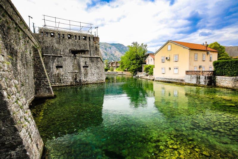 Medelhavs- landskap Medeltida stadsväggar, befästningar och flod i Kotor, Montenegro royaltyfria bilder