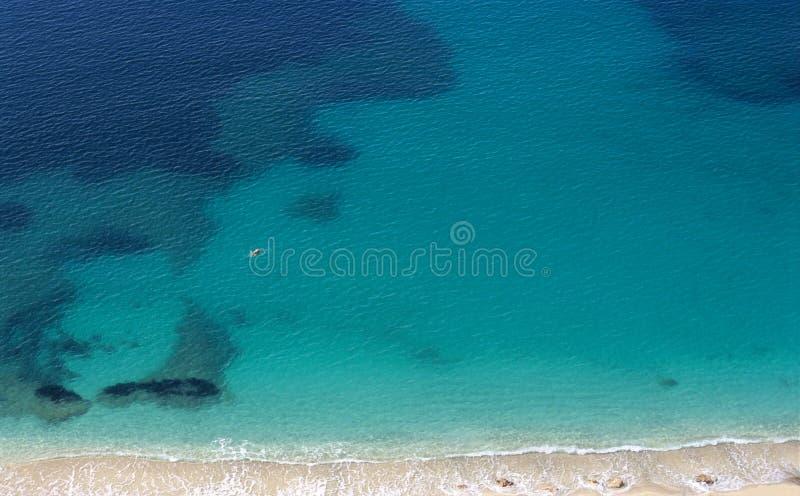 medelhavs- simmare arkivfoto
