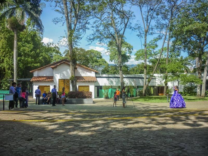Medellin botanisk trädgård royaltyfri fotografi