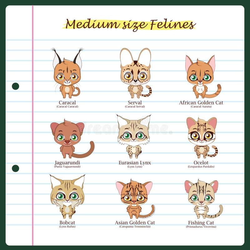 Medelstora katt- illustrationer med stamgästen och vetenskaplig na stock illustrationer