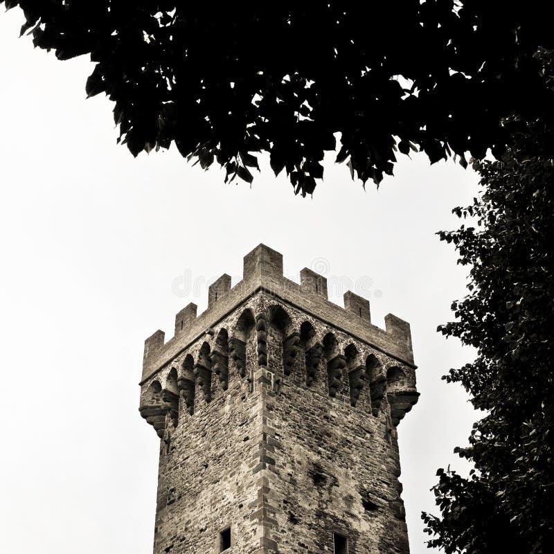 Medeltida citadell av Vicopisano fotografering för bildbyråer