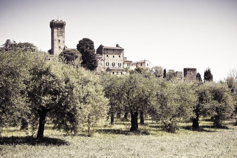 Medeltida citadell av Vicopisano Italien-Tuscany-Pisa royaltyfri foto