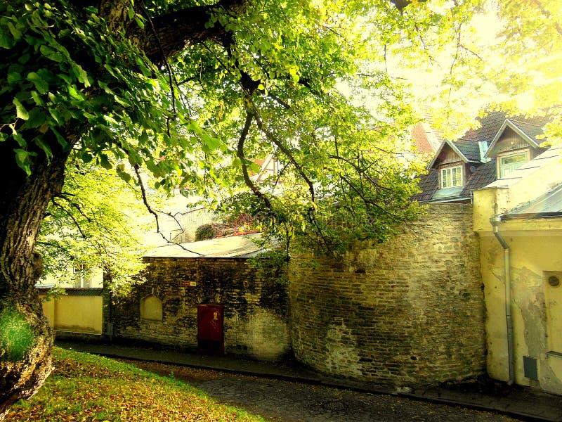 Medeltida gammal stad Tallinn royaltyfria bilder