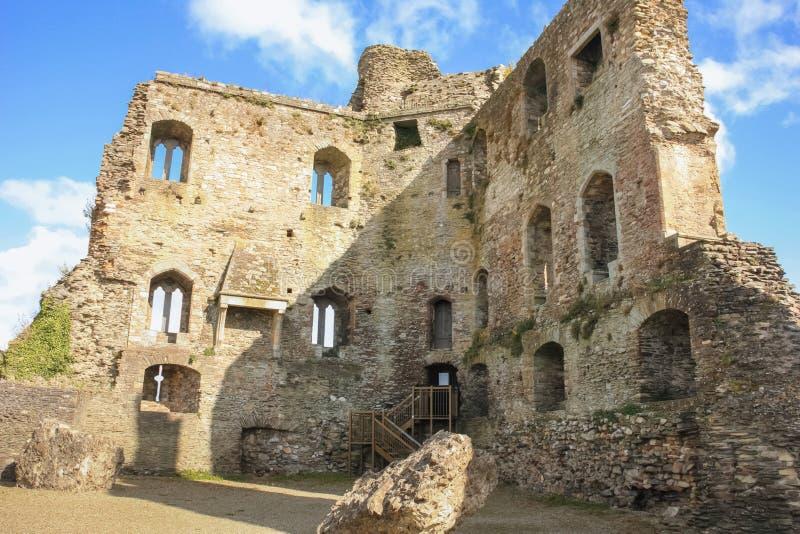 medeltida slott ferns Co Wexford ireland royaltyfri bild