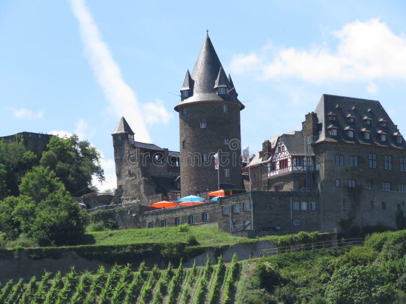 Medeltida slottar på Rhinet River i Europa royaltyfri bild