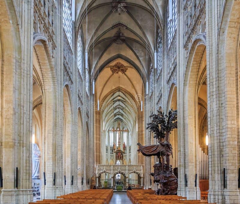 Medeltida stadshus i Leuven Belgien arkivbild