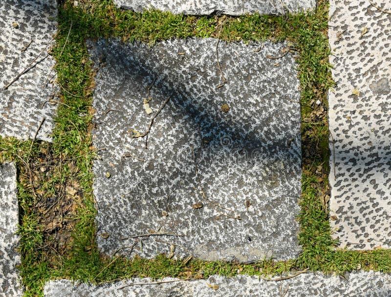 Medeltida tegelplattor för smutsig för granitterrass för yttersida gammal slott royaltyfri bild