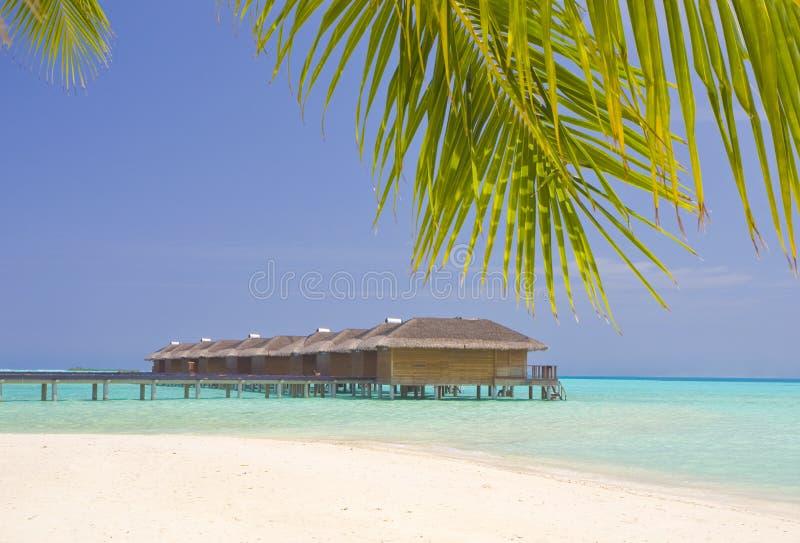 Medhufushi Island stock images