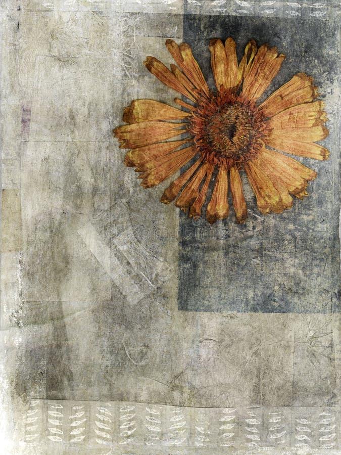 Media mezclado presionado de la flor ilustración del vector