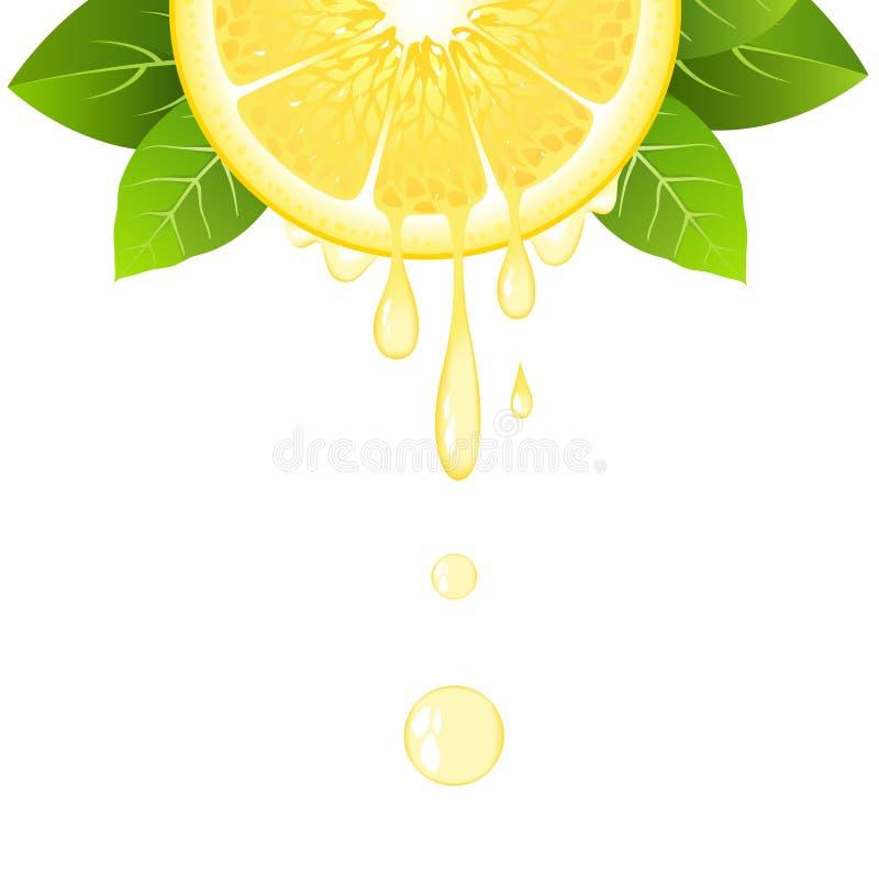 Media rebanada realista del limón con las hojas y los descensos del jugo Fruta jugosa Diseño fresco de la fruta cítrica en el eje stock de ilustración