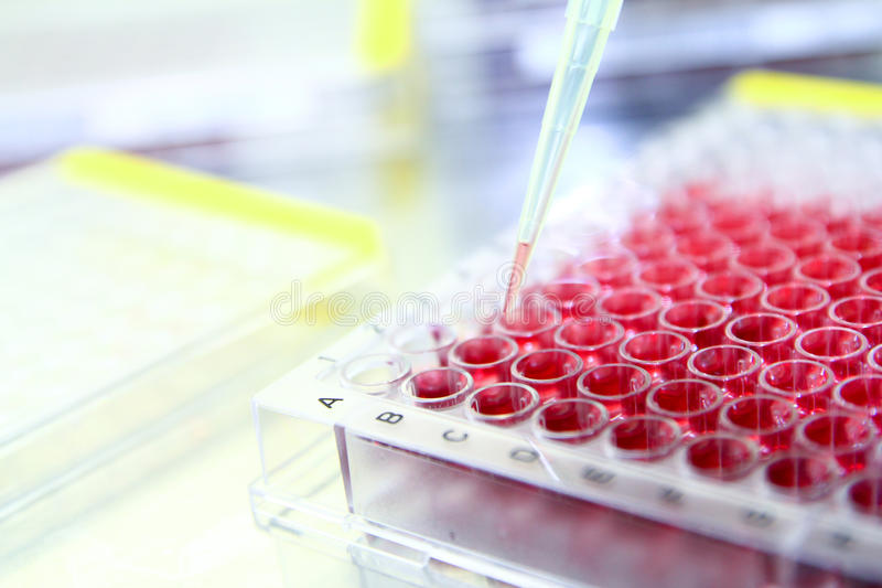 Download Medical Biotechnology Science Experiment Stock Image - Image: 25505771