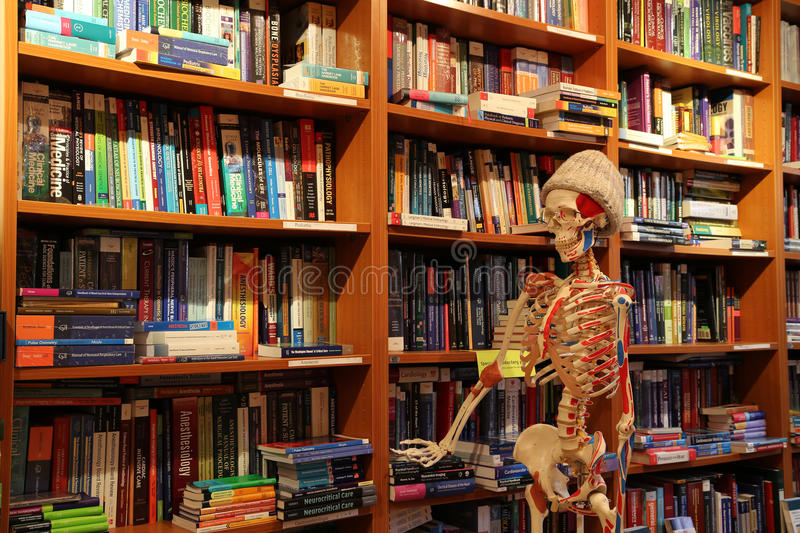 Medical Bookshop Anatomy Skeleton royalty free stock photo