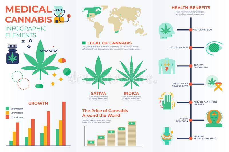 Medical cannabis infographic elements. With illustrations and icons for data report and information presentation royalty free illustration