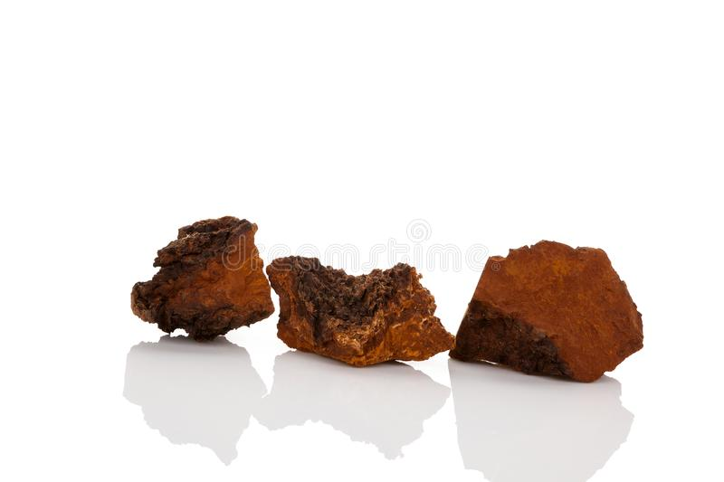 Medical chaga mushroom. Medical chaga mushroom bricks on white background stock photos