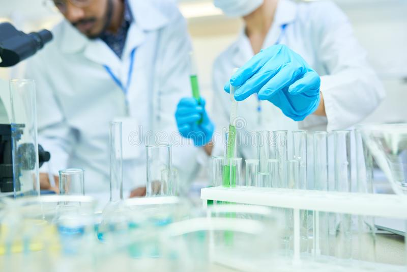 Medical colleagues holding research in lab stock image
