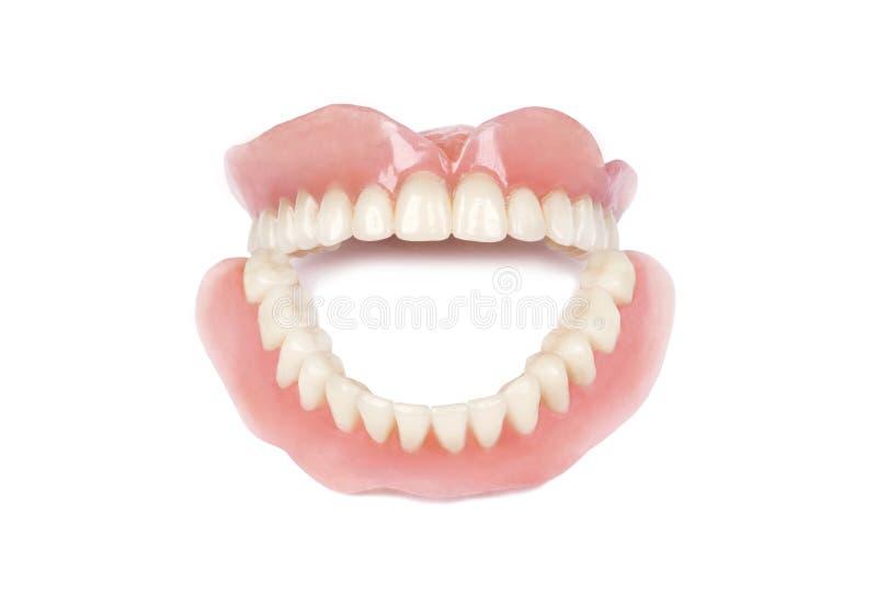 Medical denture stock photo