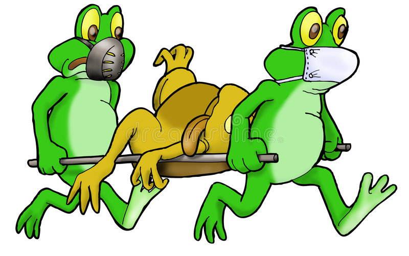 Medical Frog in action royalty free illustration