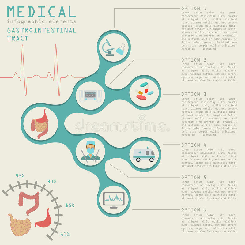 Medical and healthcare infographic, gastrointestinal tract infographics. Vector illustration royalty free illustration