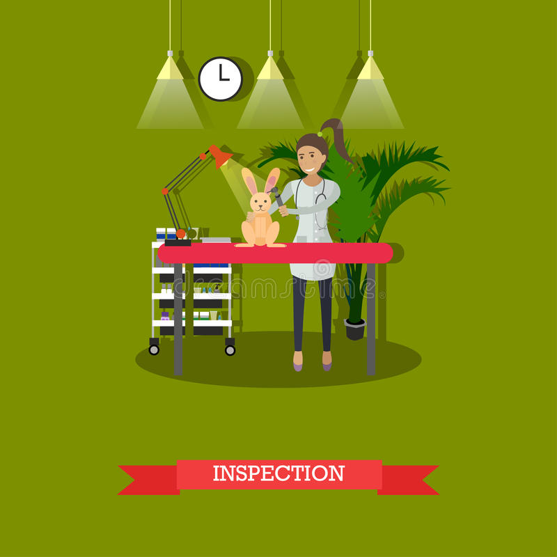 Medical inspection in vet clinic concept vector illustration, flat design. Vector illustration of vet woman inspecting little bunny. Vet clinic services, medical royalty free illustration
